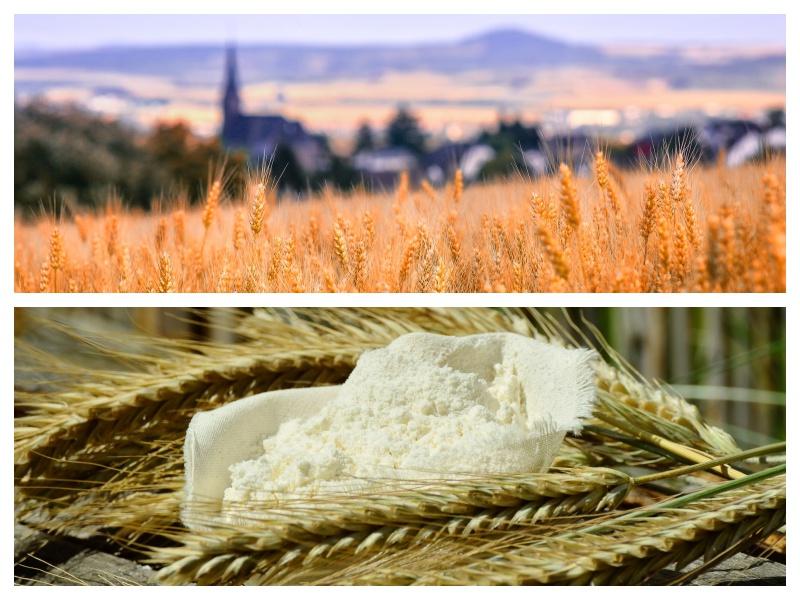 L'attribut alt de cette image est vide, son nom de fichier est mayenne-mayennais-petit-beurre-biscuits-biscuiterie-produits-locaux-laval-rilletta-caramay-13-13.jpg.